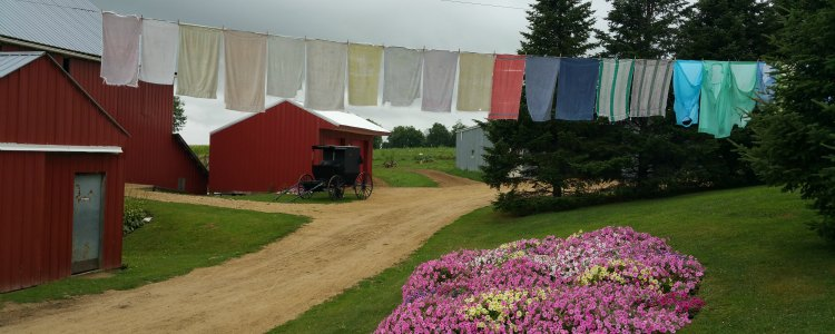 Amish Farms in Cashton, WI open for business