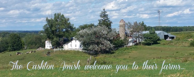 Amish in America, Cashton Wisconsin Self Guided Tour Maps and Lists