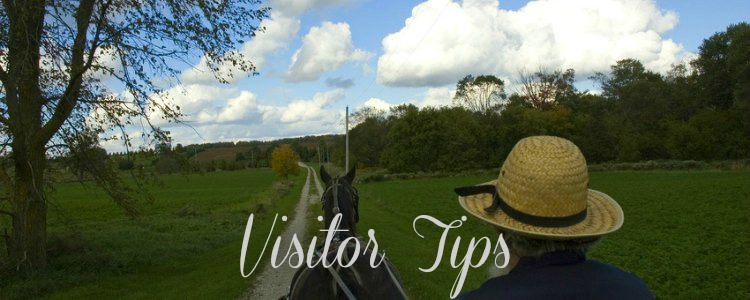 Planning your trip to see the Amish in Cashton, WI